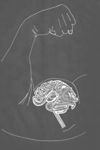 Bicep Brain